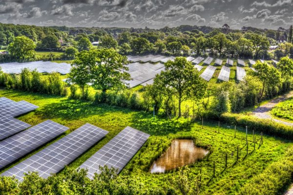 NESF toasts completion of maiden subsidy-free solar asset